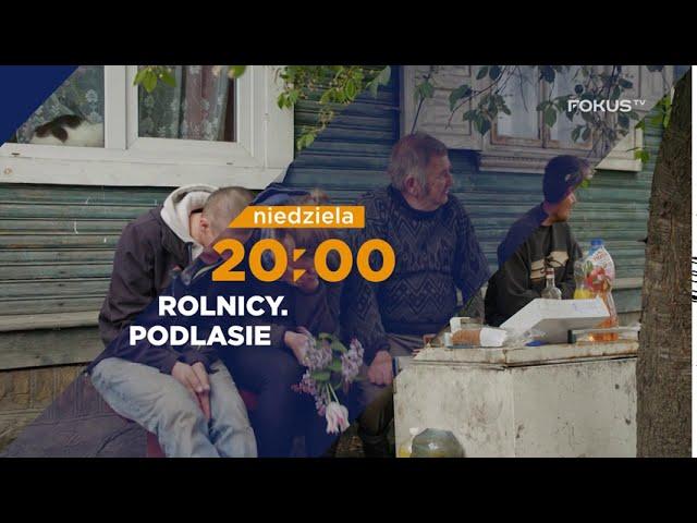 pbfy.pl