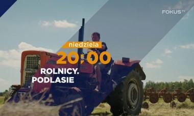 FOKUS TV serial ROLNICY. Podlasie 🔝 Problemy z traktorem, kastracja ogiera, kłopoty z krową 🌾🚜odc.15